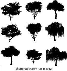 collection vector trees