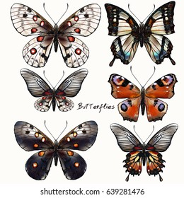 Collection of vector vintage realistic butterflies in vintage style