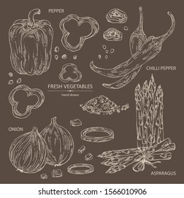 Collection of vegetables: bell pepper, chilli pepper, onion and asparagus. Vector hand drawn illustration.