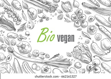collection of vegetables hand-drawn vector illustration