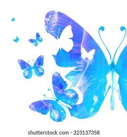 A collection of watercolor butterflies on white background