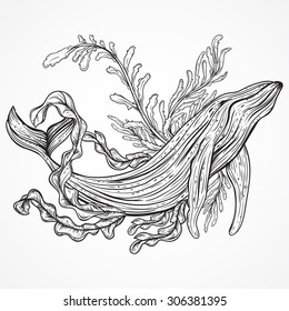 Collection of whale, marine plants, leaves and seaweed. Vintage set of black and white hand drawn marine life. Isolated vector illustration in line art style.Design for summer beach, decorations.