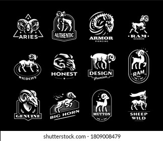 Collection of wild and domestic sheep. A ram, a sheep in various poses and a portrait. Vintage vector emblems.