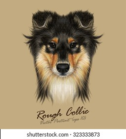 Collie Dog animal cute face. Vector Mahogany Sable Rough Collie puppy head portrait. Realistic fur portrait of black and golden shetland sheepdog isolated on tan background. Sheltie.