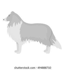 Collie vector icon in monochrome style for web
