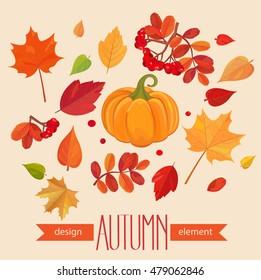 Color autumn leaves and pumpkin. Fall leaf set. Vector illustration EPS10
