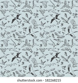 Color birds set seamless pattern The seamless pattern with big set of different wild birds. Isolated on gray background.  Vector illustration.