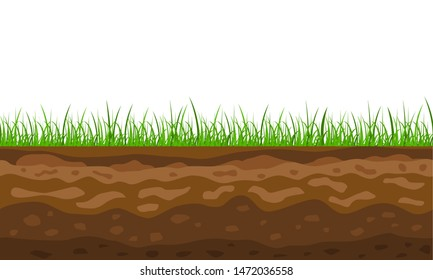 Color Cross Section of Ground with Grass. Vector illustration of Slice