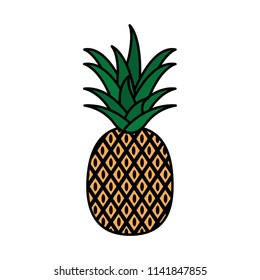 color delicious pineapple organic fruit nutrition