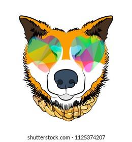 Color dog print. Rogue dog. Cartoon vector illustration.