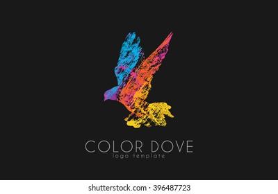 Color dove logo. Dove logo. Bird logo design. Beautiful logo