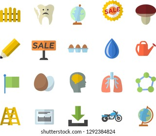Color flat icon set ladder flat vector, egg, mushroom, fence, watering can, flag, sell out, barcode, broken tooth, lungs, molecule, pencil, globe, brain fector, motorcycle, download, drop