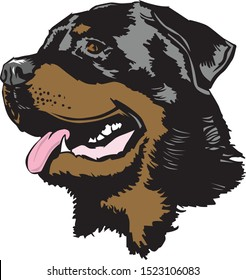 color illustration of a rottweiler head