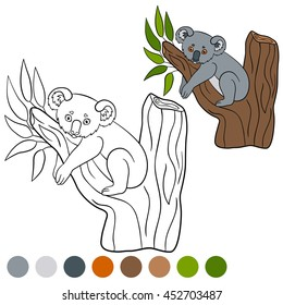 Color me: koala. Little cute baby koala sits on the tree branch and smiles.