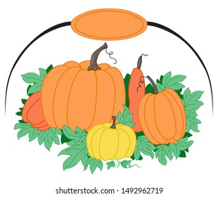 Color oval picture with yellow and orange pumpkins with green leaves. Place for an inscription or logo.