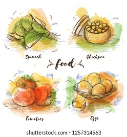 Color Set of vegetarian food in sketch graphic. Vector watercolor images of food. Healthy food, spinach, chickpea, tomatoes, eggs.