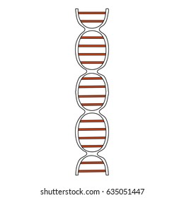 color silhouette image front view dna molecule