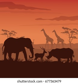 color sunset scene african landscape with silhouette wild animals