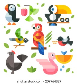 Color vector flat icon set and illustrations magic birds and chicks: toucan sitting on a branch, pelican fishing, hummingbird, parrot, chicken, puffin bird, bullfinch