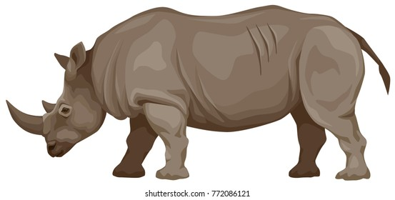 color vector illustration of an African rhinoceros, side view.