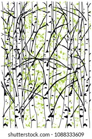 Color vector illustration of birch trees. Spring birch trees forest. Simple spring birch trees painting with green ink blots.