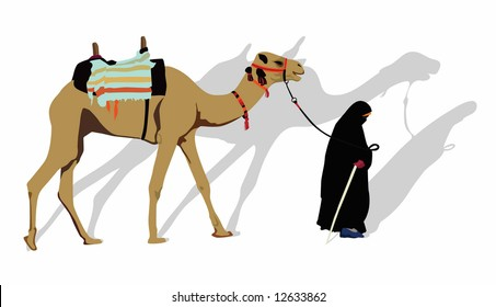 Color vector image of a bedouin woman walking, leading a camel.