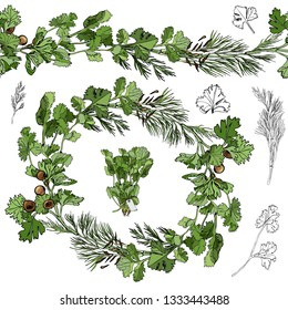 Color wreath and endless brush with color and monochrome herbs  with leaves and spices isolated on white background. Hand drawn ink sketch. Vector illustration.