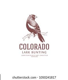 Colorado State Bird Vintage Logo. Lark Bunting