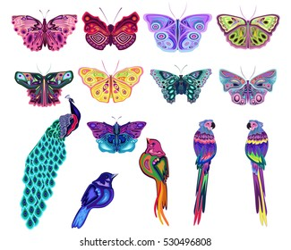 Colored abstract butterflies and birds set, vector
