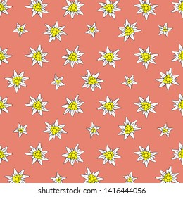 colored background Alpine edelweiss pink