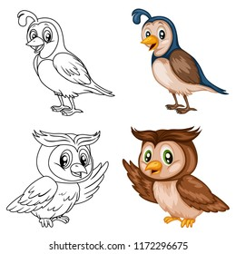 Colored and Black and White Vector Illustration of a Happy Quail and Owl. Cute Cartoon Quail Isolated on a White Background Coloring Page. Happy Animals Coloring Book for Children