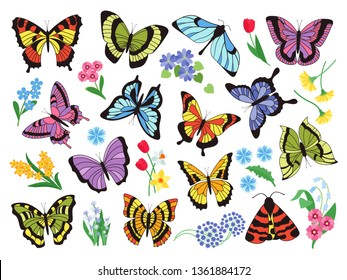 Colored butterflies. Hand drawn simple collection of butterflies and flowers isolated on white background. Vector graphic collection drawn vintage flying insect