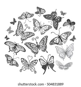 Colored butterfly logo set, vector illustration isolated on background