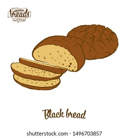 Colored drawing of Black bread bread. Vector illustration of Rye bread food, usually known in Europe. Colored Bread sketches.