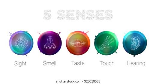 Colored Five Senses Hand Lips Eye Ear Nose