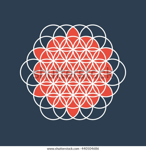 colored flower of life sacred geometry vector illustration