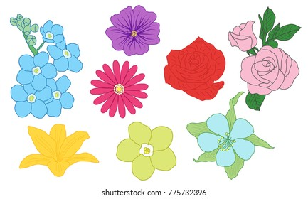colored flower sketch collection vector hand drawn floral set line art various flowers