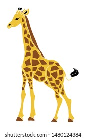 Colored giraffe vector illustration. African safari animal drawing, good for kids products