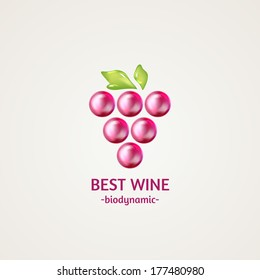 Colored glossy and shiny winery sphere icon. Vector illustration