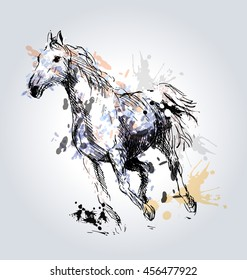 Colored Hand drawing horse. Vector illustration