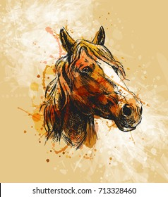 Colored hand sketch horse head on a grunge background. Vector illustration