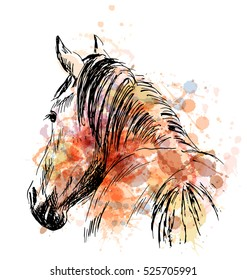 Colored hand sketch horses behind. Vector illustration