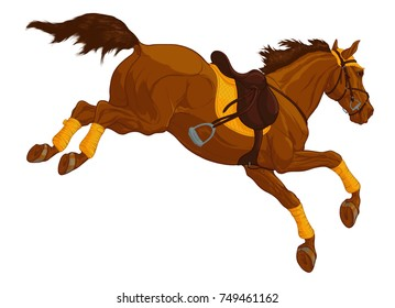 Colored illustration of a jumping Tersk horse. Design element of equestrian goods. Image of a red stallion in a snaffle bridle with Mexican noseband. Vector steed in sport English saddle.