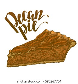 Colored Pecan Pie. Sweet Pie with Nuts in Hand Drawn Style for Prints Menu Fliers Banners. Vector Illustration