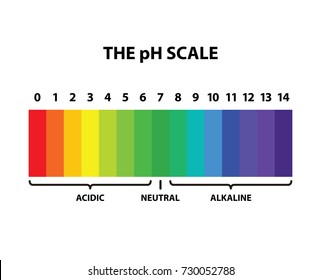 Colored the pH scale rainbow - isolated vector illustration