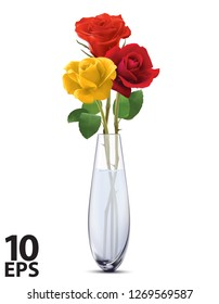 Colored Roses in a glass vase, isolated. Realistic vector 3d illustration