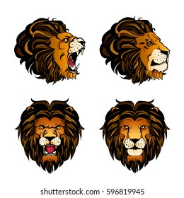 Colored set of four isolated cartoon lion heads in different angles and moods on white background vector illustration
