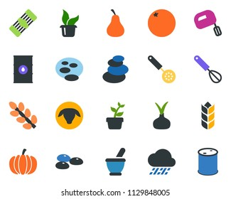 colored vector icon set - seeds vector, mortar, sheep, pumpkin, onion, orange, pear, spa, watering, sproute, seedling, pond, rain, barrel, oil