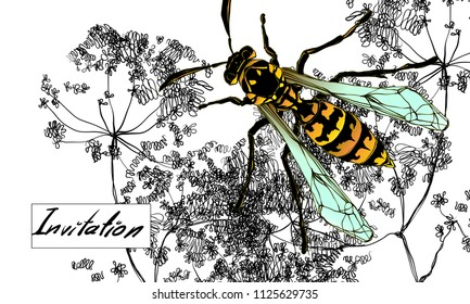 Colored wasp on white background. Ornate decorated yellow insect for visit card. Hand drawn vector flower illustration. Fantasy,nature, invitatio. Ecologic cosmetics.