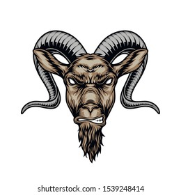 Colorful angry horned goat head in vintage style isolated vector illustration